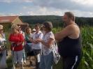 Sommerferienprogramm in Leonberg  - August 2013